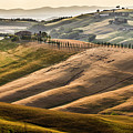 Val D'orcia Landscape by Wolfgang Stocker