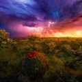 Oil Painting Landscape Pictures by Usa Map
