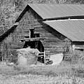 A Barn In Georgia by Kim Hojnacki