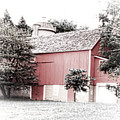 A Barn In The City by Debbie Nobile
