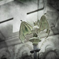 A Bat In The Belfry by David Olson