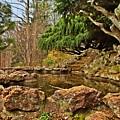 A Better Place - Deep Cut Gardens by Angie Tirado
