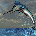 A Blue Marlin Flashes Its Iridescent by Corey Ford