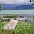 A Boardwalk To Bear Lake by Mary Lou Stone