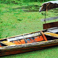 A Boat On Amazon Green Water by HQ Photo