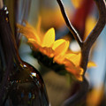 A Bottle And Sunflowers by Mike Reid