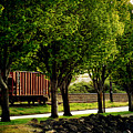 A Boxcar Story by Kerry Langel