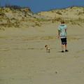 A Boy And His Pug by Trish Tritz