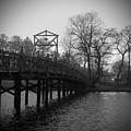 Homage To Spring Lake by Jethro Singer