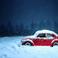 A Bug In The Snow by David Dehner
