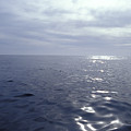 A Calm Ocean With Small Ripples by Jason Edwards