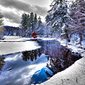 A Calm Winter Scene by David Patterson