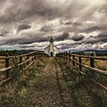 A Chosen Path by Karl Anderson