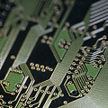 A Close View Of A Silicon Circuit Board by Taylor S. Kennedy