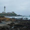 A Cloudy Day At Pigeon Point by Bryant Coffey