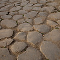 A Cobblestone Road In Rome by Joel Sartore