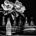 A Coke And Magnolia Still Life Black And White by JC Findley
