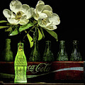 A Coke And Magnolia Still Life by JC Findley