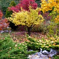 A Colorful Fall Corner by Will Borden