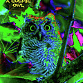 A Cosmic Owl In A Psychedelic Forest by Ben Upham III