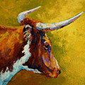 A Couple Of Pointers - Longhorn Steer by Marion Rose