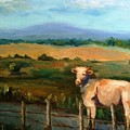 A Cow Up In Missouri by Sharon Franke
