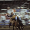 A Cowboy Rides A Bucking Bronco by Taylor S. Kennedy