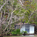 A Cozy Spot On The Apalachicola River by Carla Parris
