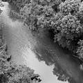 A Creek Runs Through It -- 2 by Cora Wandel