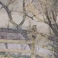 A Creek Runs Through It by Susan Maxwell Schmidt