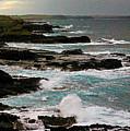 A Dangerous Coastline by Blair Stuart