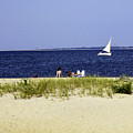 A Day At The Beach - Martha's Vineyard by Madeline Ellis