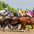 A Day At The Races by Joe Benning