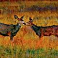 A Deer Kiss by Blake Richards