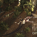 A Dimorphodon Pterosaur Chasing An by Arthur Dorety