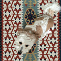 A Dog In On A Rug by Stan  Magnan