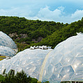 A Dome Away From Dome by Kevin Williams