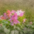 A Dream Of Summer by Bill McEntee