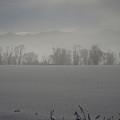 A Early Frosty Morn by DeeLon Merritt