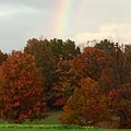 A Fall Rainbow by Wendy S Beatty