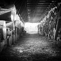 Farmer's Woodpile At Lusscroft Farm In Black And White by John Prause