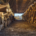 Woodpile At Lusscroft Farm In Color by John Prause