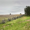 A Fence At Manassas by Peter Williams