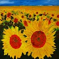 A Field Of Sunflowers by Veron Miller