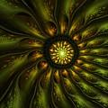 A Floral Feeling by David Lane