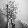 A Foggy Walkway by Ron Vollentine