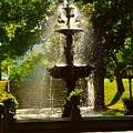 A Fountain In A St. Paul Park by Curtis Tilleraas