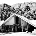 A Frame Bw Palm Springs by William Dey