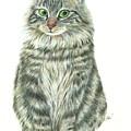 A Furry Cat  by Jingfen Hwu