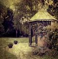 A Garden Somewhere by Margaret Hormann Bfa